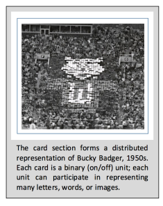 bucky badger card section