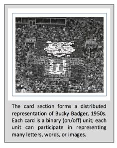 bucky badger card section
